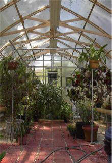 Gardening In The Greenhouse Gothic Arch Greenhouses Blog