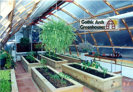 best cold weather crops gothic arch greenhouses