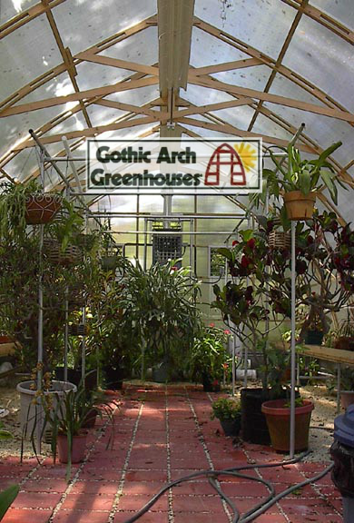 How to Grow Orchids Gothic Arch Greenhouse