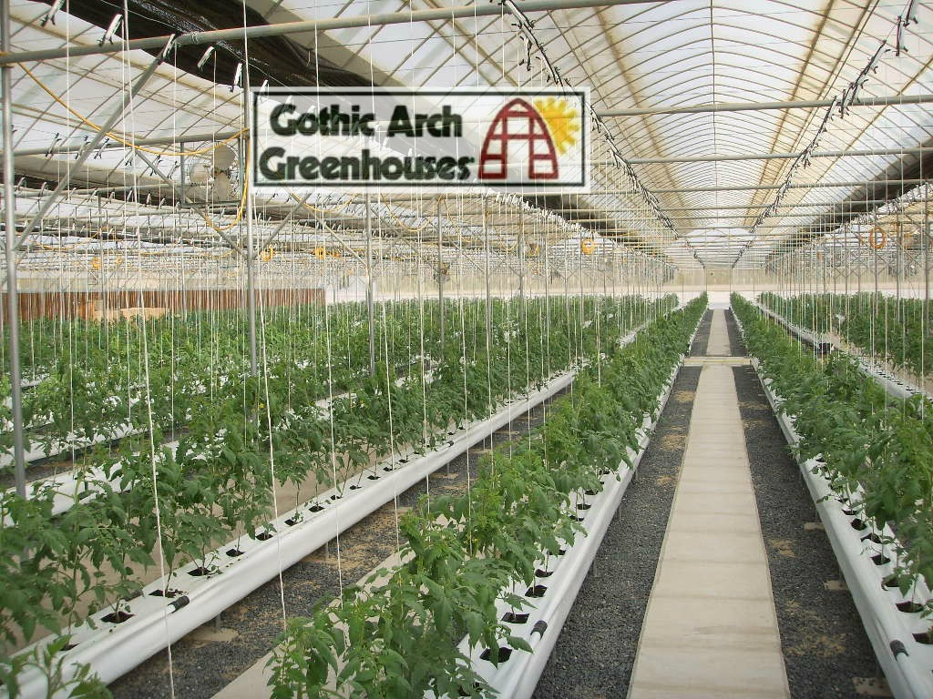 Getting Started With Hydroponics Gothic Arch