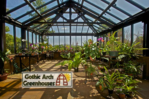 What to Plant in Greenhouse in Summer Gothic Arch