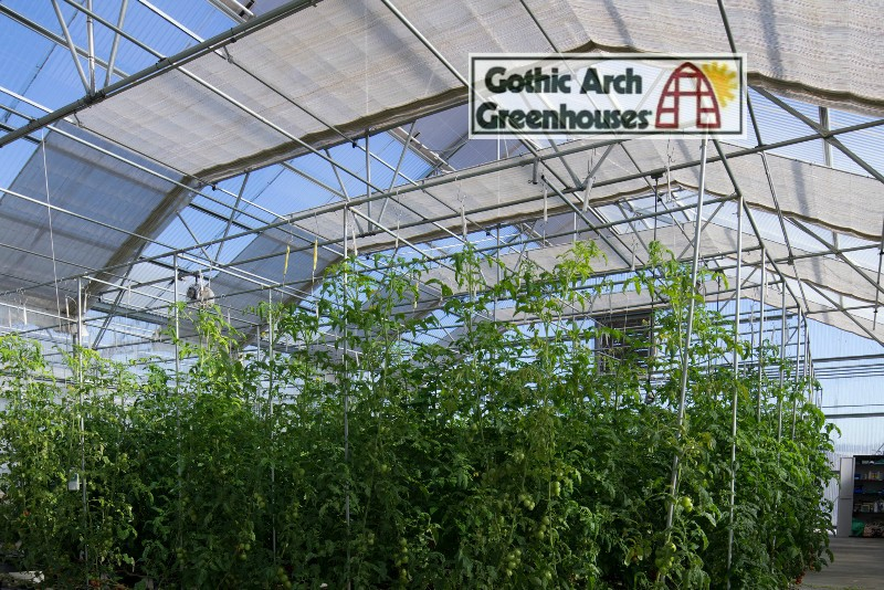 Greenhouse Shade Cloth Gothic Arch