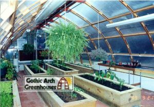 Greenhouse Gothic Arch trees tall plants