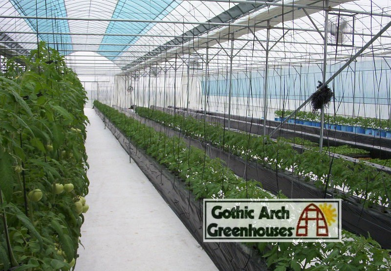 Hydroponic Gardening Seedlings Gothic Arch Greenhouse