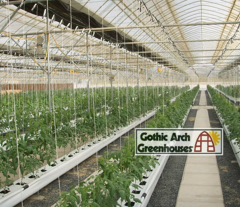 Hydroponic Winter Gardening Gothic Arch Greenhouse