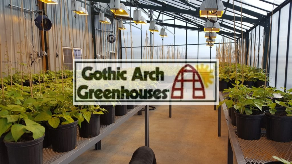 Greenhouse Innovations Gothic Arch Greenhouses