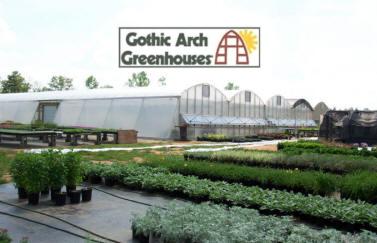 potting greenhouse plants