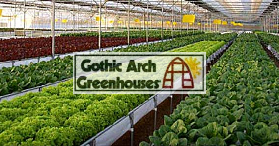 Choosing a Hydroponics System Gothic Arch Greenhouses Hydroponic Gardening