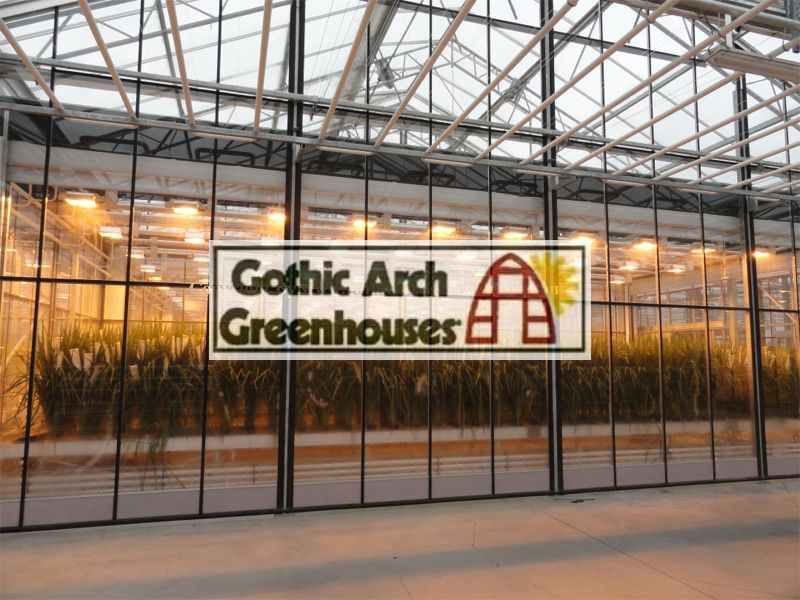 Grow Lights Greenhouse Gothic Arch