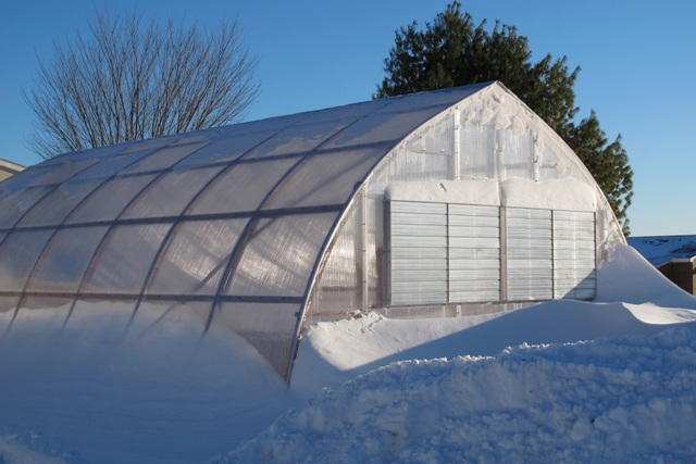 Winter Greenhouse Growing Tips