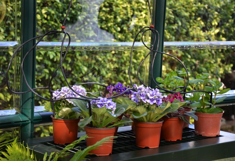 Best Greenhouse Irrigation
