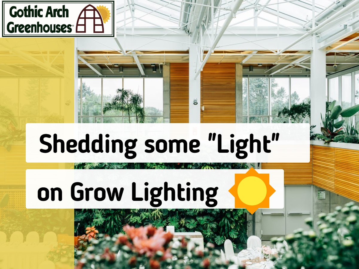 Guide for choosing grow lighting