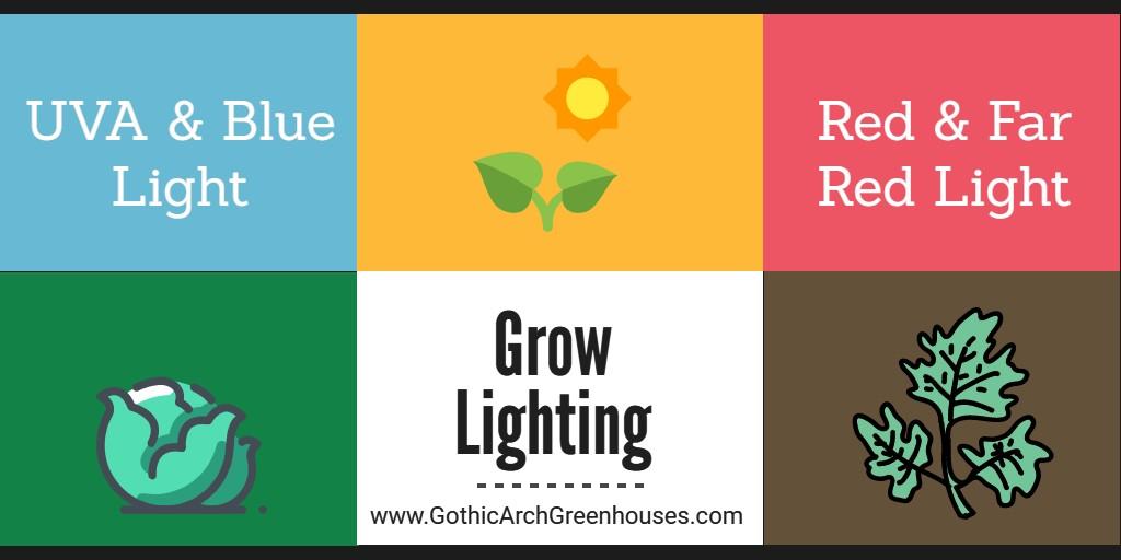Grow Lighting growth chart