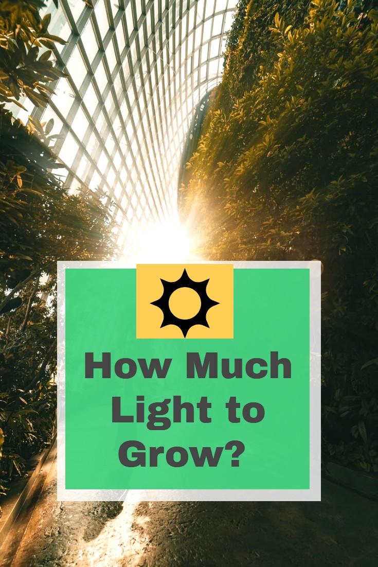 Grow Lighting Requirments