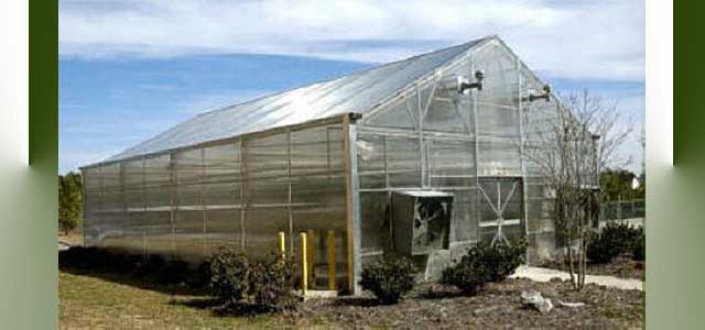 Arch 6500 Greenhouse