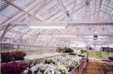 AC Garden Series GreenhousesCommercial Greenhouses