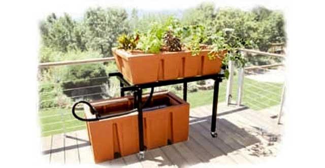 Aquaponics beds for sale images for Aquaponics systems for sale