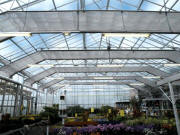 Wide Span Greenhouses