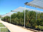 "Retractable ""flat roof"" greenhouses"