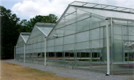 Gable Series 7500 Greenhouses