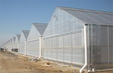 Commercial Gable 7500 Greenhouse