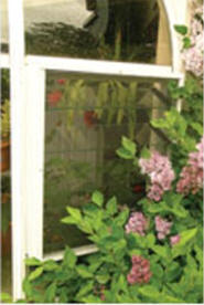 Greenhouse Accessories - Vent Screens