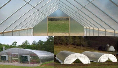 Greenhouse Poly Film Agricultural Cover Films Greenhouse