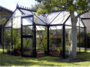 Victorian junior greenhouse for garden
