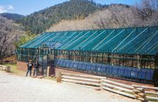 Commercial Glass Greenhouse Powder Coat Finish Green