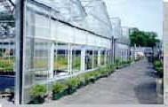 Retractable Roof �Greenhouse