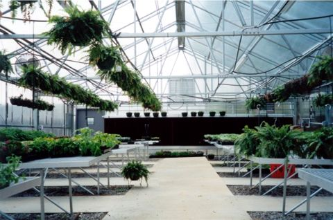 ja frame greenhouses