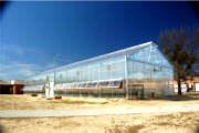 Commercial Greenhouse - Appalachian Greenhouses