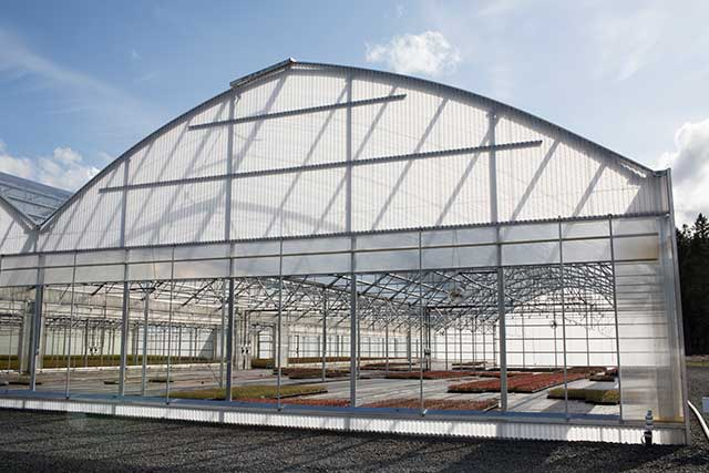 Arch Greenhouse Gothic Arch Greenhouses