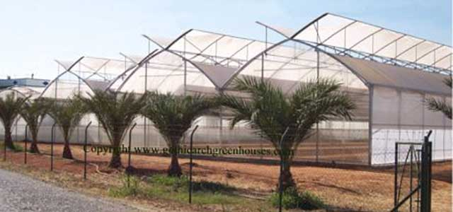 AT-Greenhouses-Commercial Greenhouses