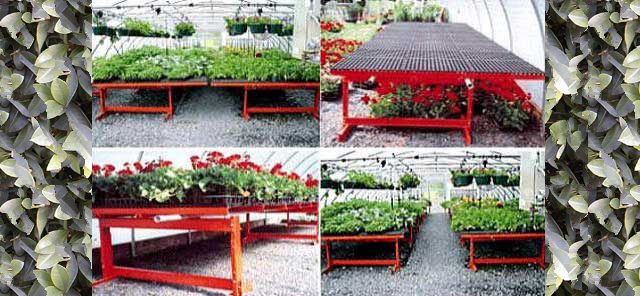 Lifetime Rolling Greenhouse Benches