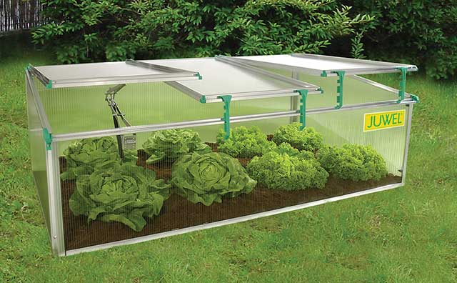 Mini Cold Frames Gothic Arch Greenhouses