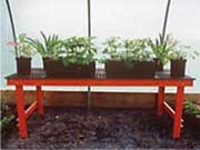 Stationary Growing Bench Systems-Fixed Legs