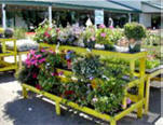 Greenhouse Benches-A-V Three-Tier Stair Step Display