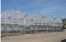 Commercial Free Air Greenhouse