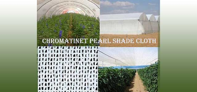 ChromatiNet Pearl Shade Cloth