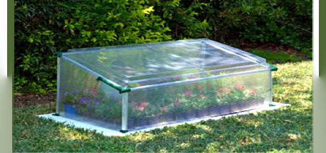 Cold Frame Single