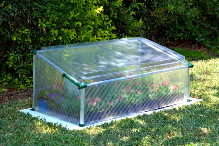 Cold Frame Single Gothic Arch Greenhouses