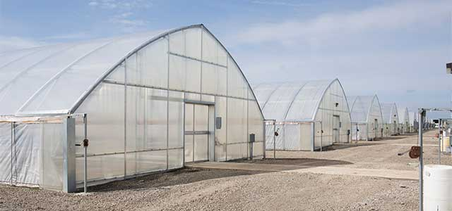 cold frame series 1200 greenhouse