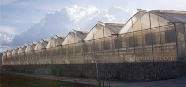 Multi Greenhouses
