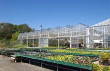 Retail Garden Greenhouses