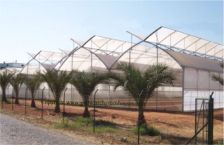 commercial AT Greenhouses - Plastic Greenhouse