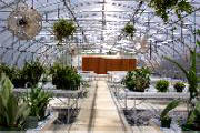 Schools, hospitals, nursing homes, and prisons have all discovered the values of greenhouses for education and development.