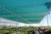 Shade Houses for your crop