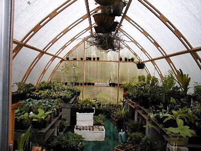 Gothic Arch Greenhouses Review A Jauken