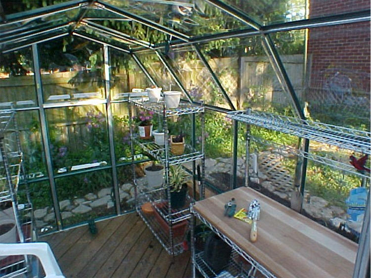 6x8 Enthusiast Greenhouse
